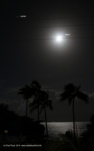 Wide angle image of Holloway Beach (Cairns, Far North Queensland) palms, Jupiter and the Moon. (c) Paul Floyd 2014